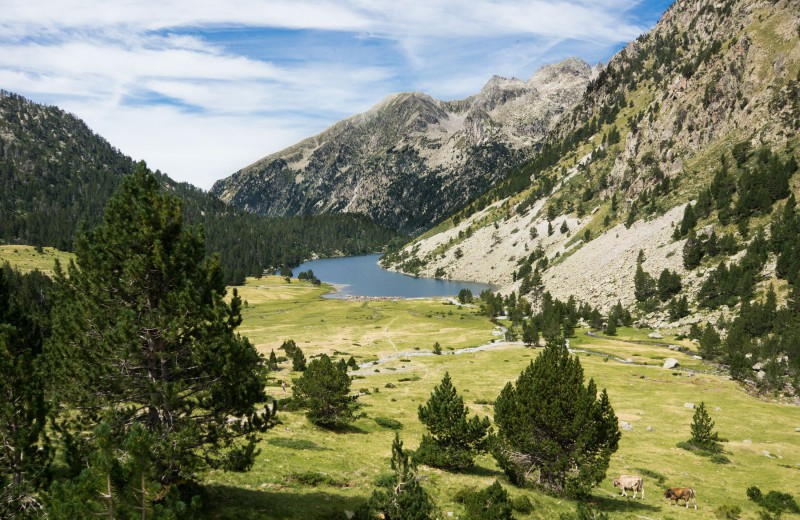 Check out our offer in the Spanish Pyrenees